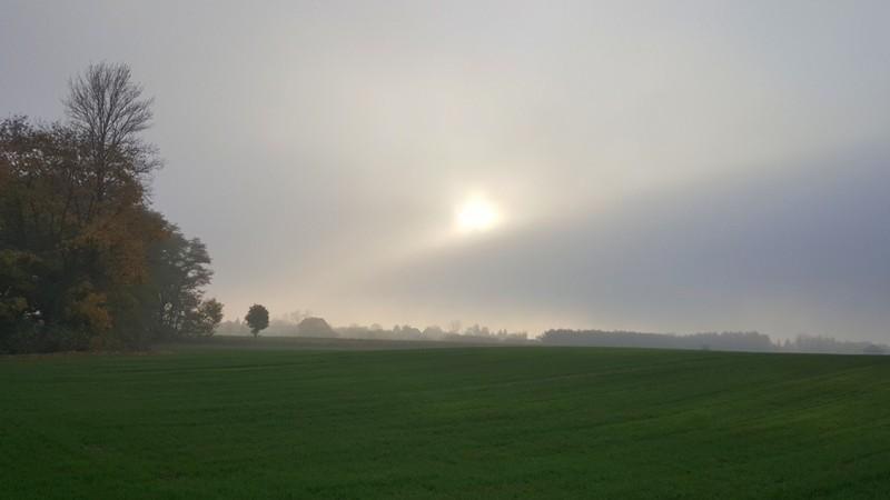 jesienna mgla