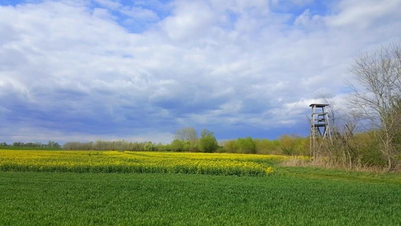 wiosenne widoki